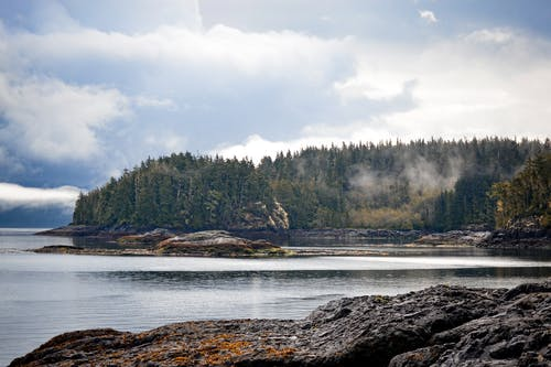 Free stock photo of british columbia, canada, cloudy skies, coniferous trees