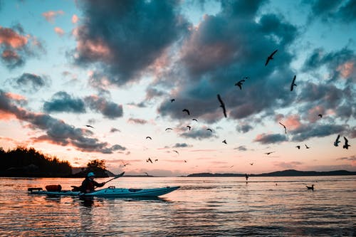 Бесплатное стоковое фото с активный отдых, байдарка, вечер, водный транспорт