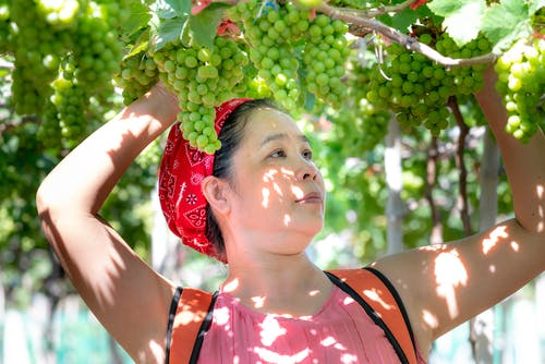 Woman Under Bunch of Grapes