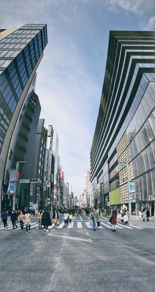 Fotos de stock gratuitas de distrito comercial, tokio