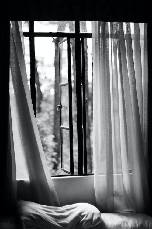 Grayscale Photography of Open Window