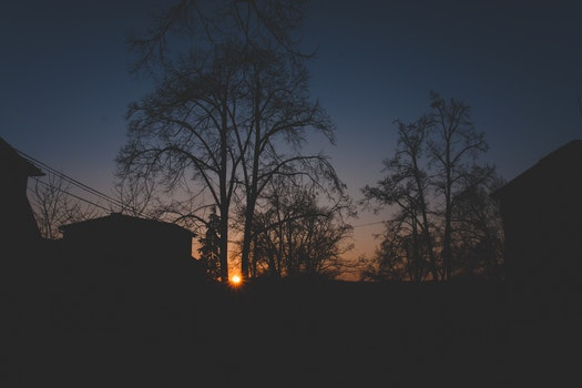 Free stock photo of wood, light, city, dawn