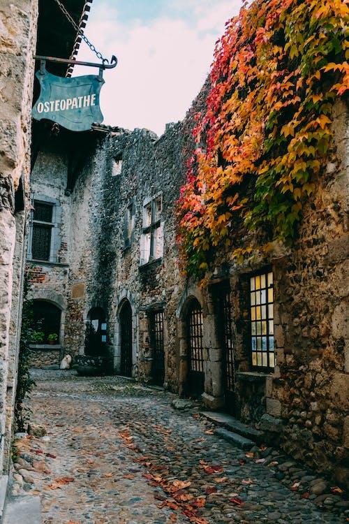 Foto stok gratis Arsitektur, batu, batu besar, daun maple