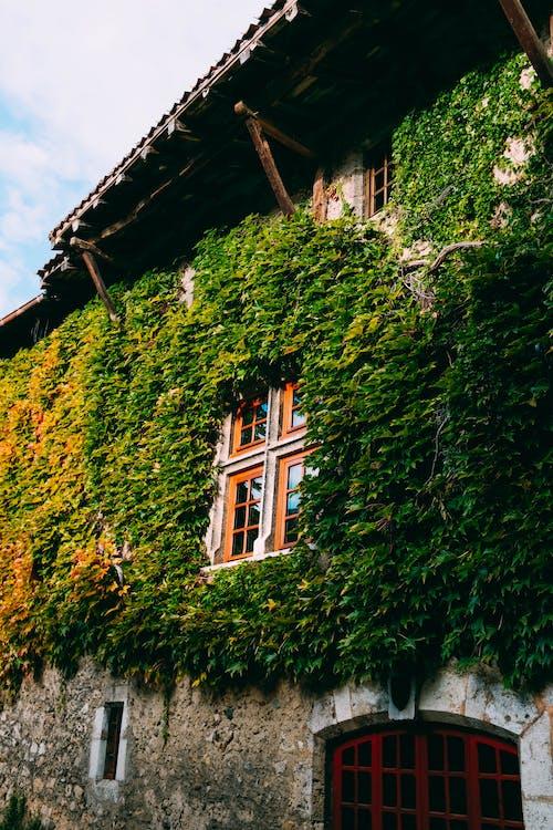 Photos gratuites de architecture, bâtiment, bungalow, chez-soi