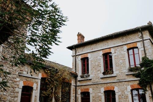 가족, 거리, 건물, 건물 외관의 무료 스톡 사진