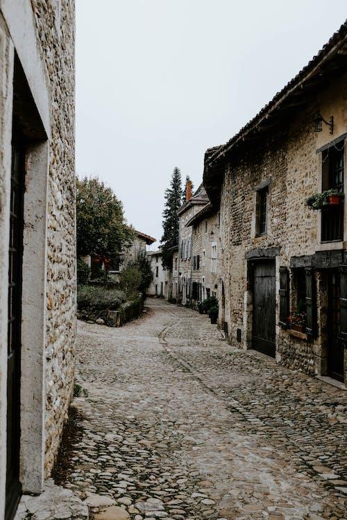 Foto profissional grátis de alameda, arquitetura, calçamento, casas