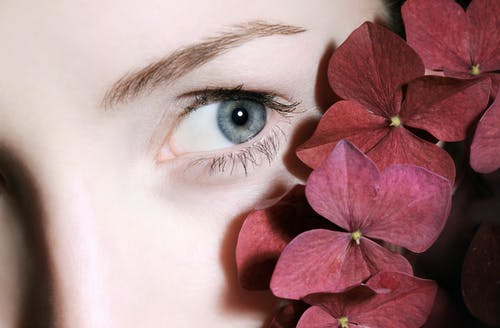 Free stock photo of beautiful eyes, beauty, beauty face, bloom