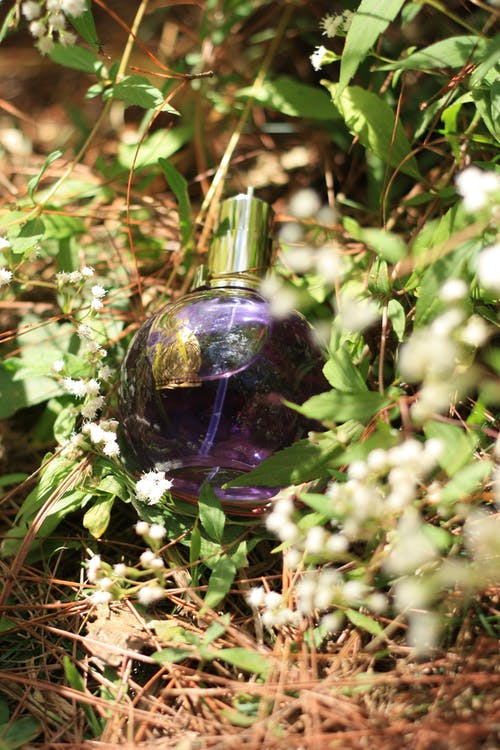 Free stock photo of perfume