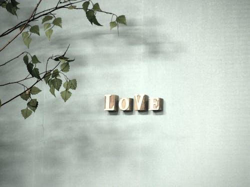 Immagine gratuita di amore
