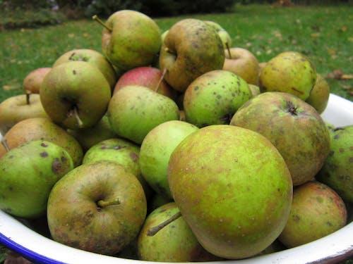 Бесплатное стоковое фото с зеленое яблоко, миска, фрукты, яблоки