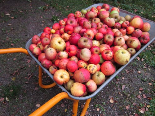 Бесплатное стоковое фото с зеленое яблоко, красное яблоко, курган, тачка
