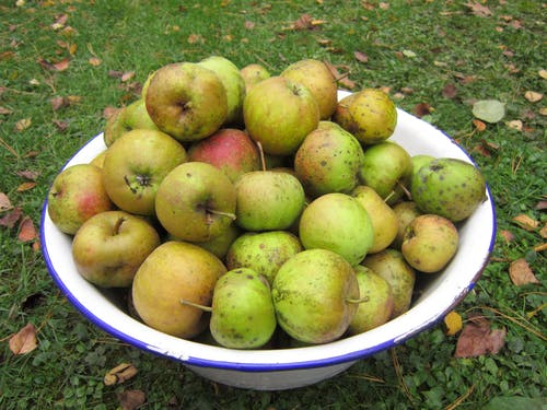Бесплатное стоковое фото с зеленое яблоко, миска, трава, фрукты