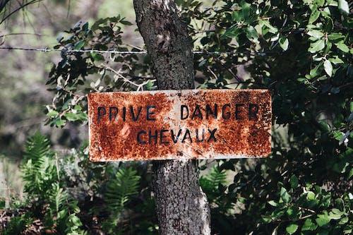 Prive Danger Chevaux Beschilderung