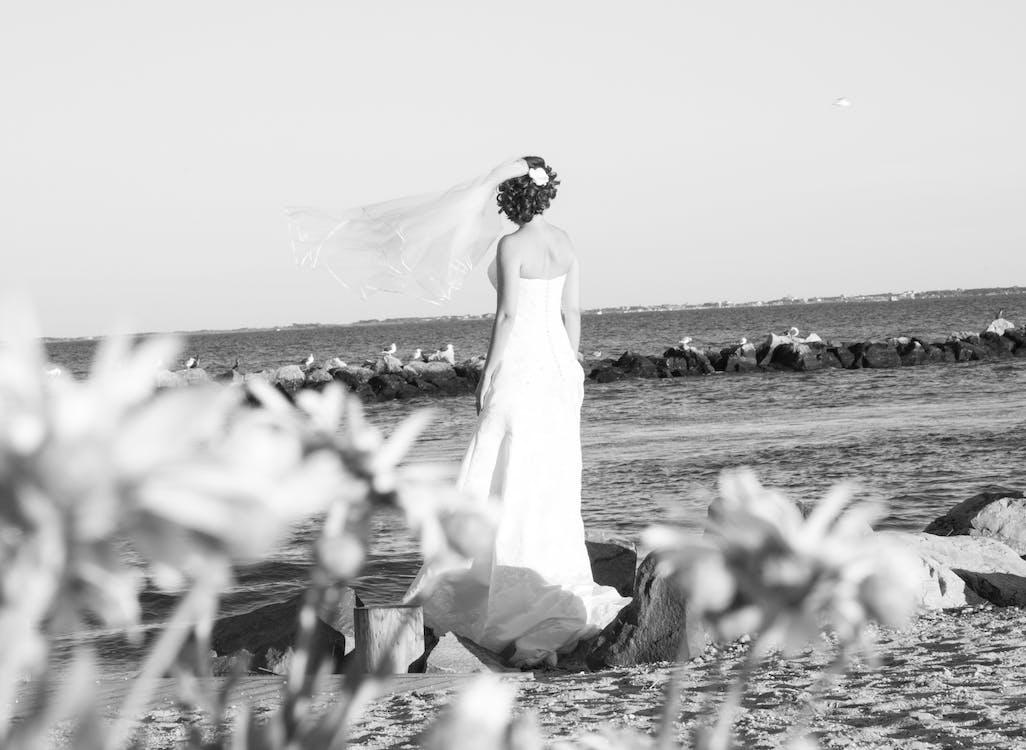 Free stock photo of beach, bride, veil