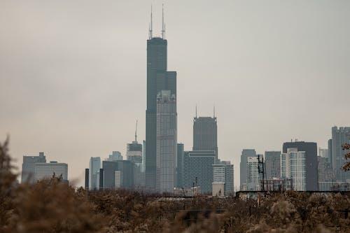 Бесплатное стоковое фото с горизонт, китайский квартал, чикаго