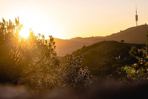 Free stock photo of afternoon, autumn colors, beatiful landscape, Beautiful sunset