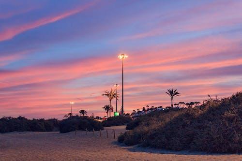 Безкоштовне стокове фото на тему «берег, берег моря, з підсвіткою, Захід сонця»