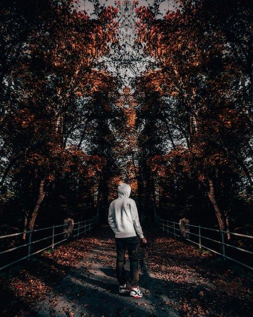 Man Wearing Gray Hoodie Standing Under Trees