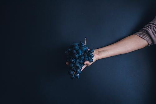 Foto d'estoc gratuïta de braç, deliciós, estudi, fosc