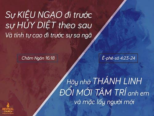 Безкоштовне стокове фото на тему «Біблія, дім, круті шпалери, любов»