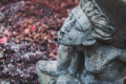 bulanıklık, doku, gün ışığı, heykel içeren Ücretsiz stok fotoğraf