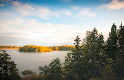 가을, 강, 경치, 경치가 좋은의 무료 스톡 사진