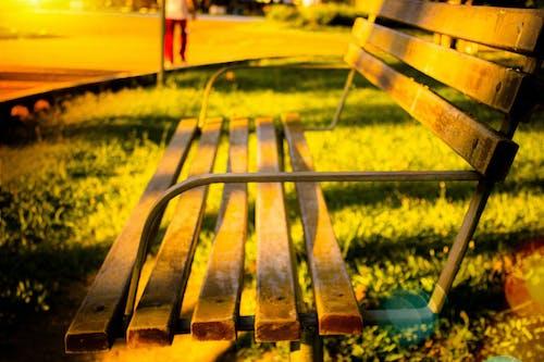 Foto profissional grátis de banco de madeira, banco de parque, parque na cidade, parque urbano