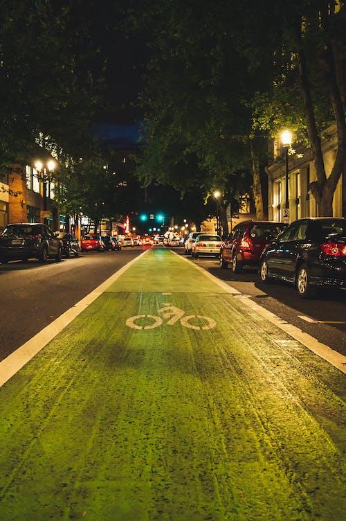 Green Bicycle Lane at Night