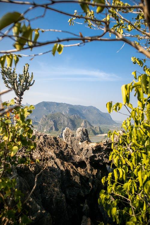 Imagine de stoc gratuită din munți, peisaj frumos