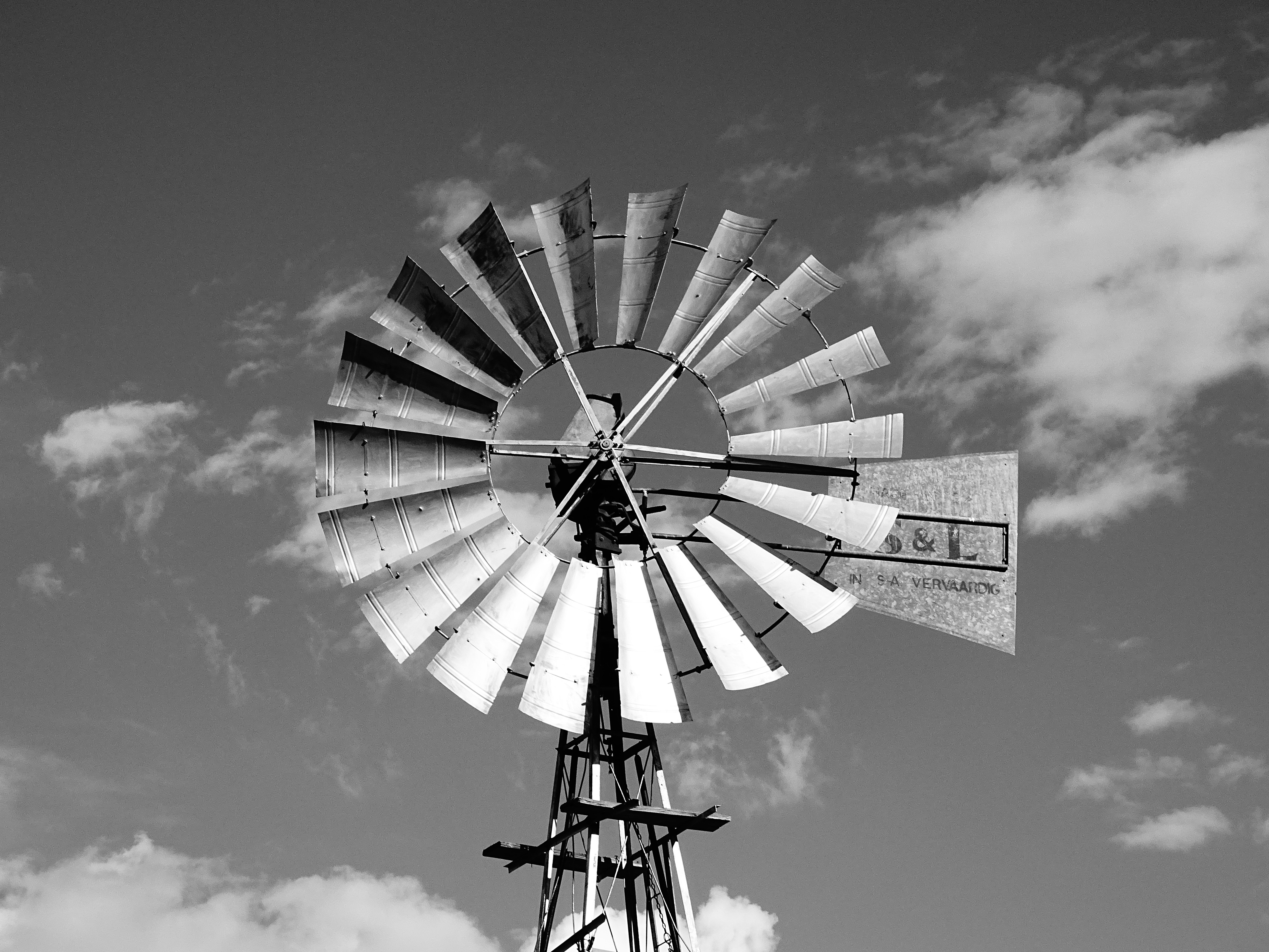 Free stock photo of black and white farm south africa