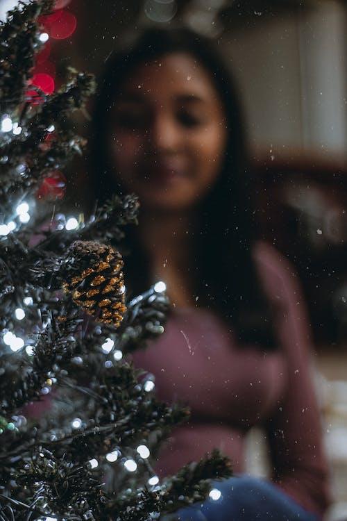 クリスマス, クリスマスツリー, クリスマスデコレーション, クリスマスの灯りの無料の写真素材