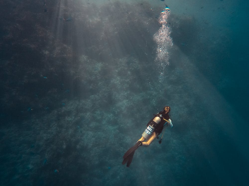 Person Diving on Ocean