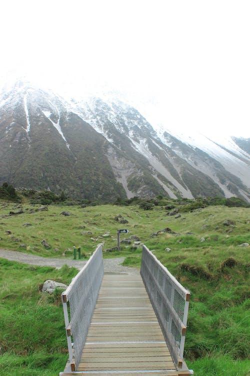 bjerg, bro, græs