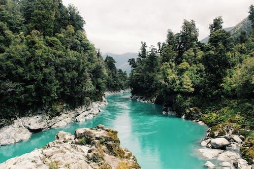 Бесплатное стоковое фото с HD-обои, бирюзовый, вода, деревья