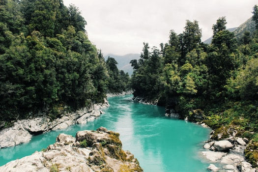 Scenic View of River