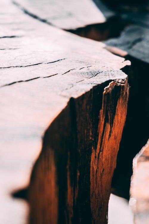 Gratis stockfoto met close-up, detailopname, hout, log