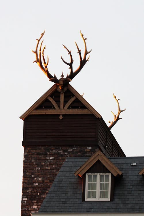 Brown Wooden House With Antlers On Roof