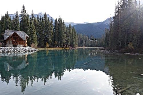 Безкоштовне стокове фото на тему «Будівля, вічнозелений, вода, гори»
