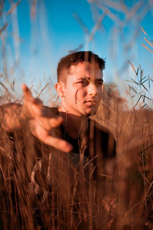 Ingyenes stockfotó álló kép, csinos, Férfi, fű témában