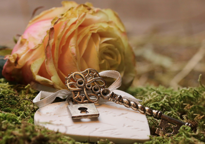 blomst, blomstrende roser, bryllup
