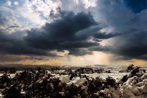 겨울, 겨울 풍경, 경치, 날씨의 무료 스톡 사진