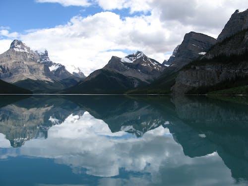 Immagine gratuita di acqua, alberi, avventura, cielo