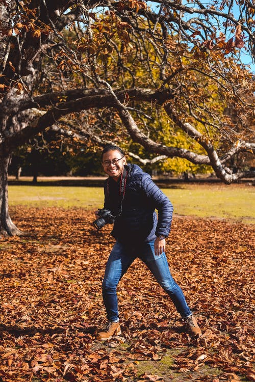 Základová fotografie zdarma na téma cestování, dorset, ostrov brownsea, podzim