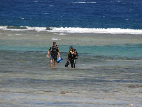 Základová fotografie zdarma na téma chůze, Egypt, moře, potápění