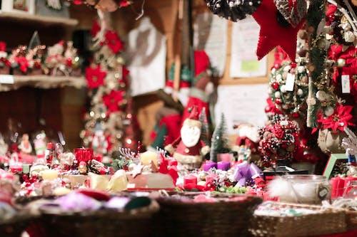 Imagine de stoc gratuită din brad de crăciun, bucurie, Crăciun, decorațiune