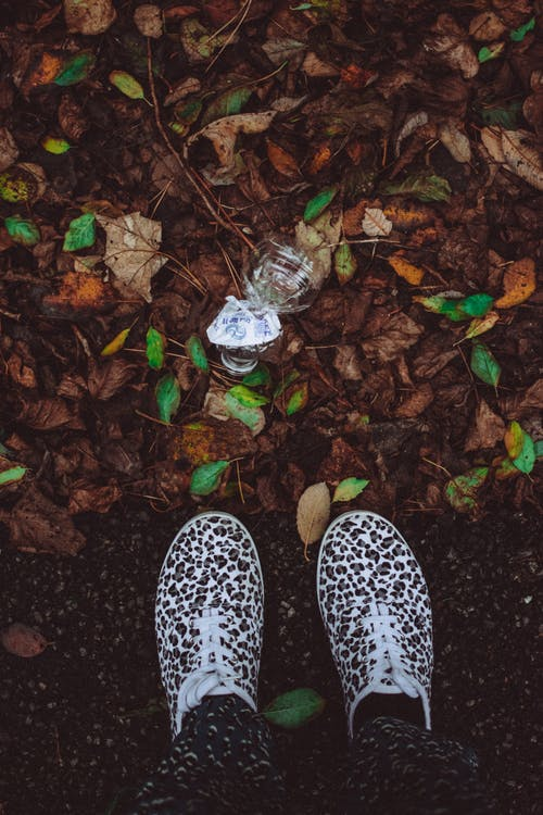 Person Wearing Brown-and-white Leopard Print Shoes Standing on Ground Near Brown and Green Leaves