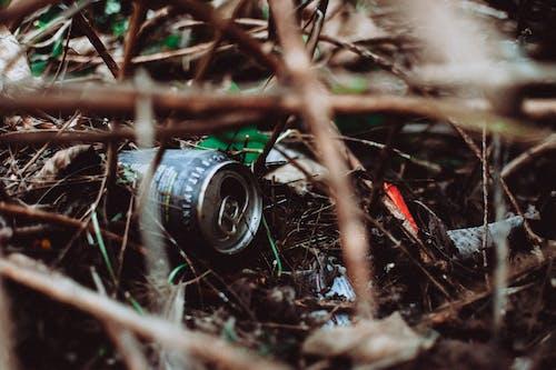 Gratis arkivbilde med avfall, bakken, boks, gress