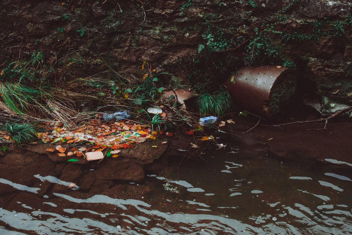 Trash on Body of Water