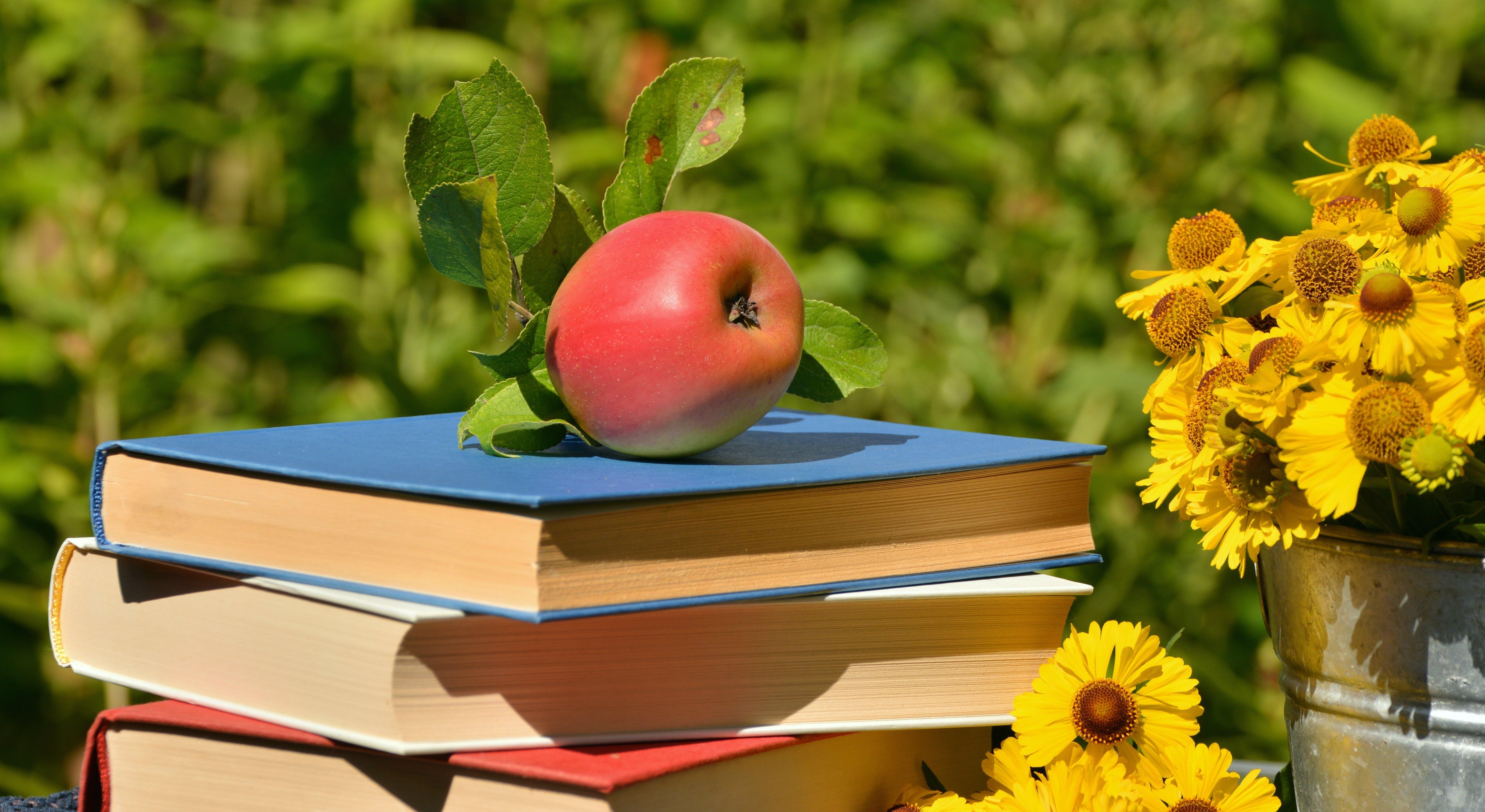 Free stock photo of apple, books, break, browse