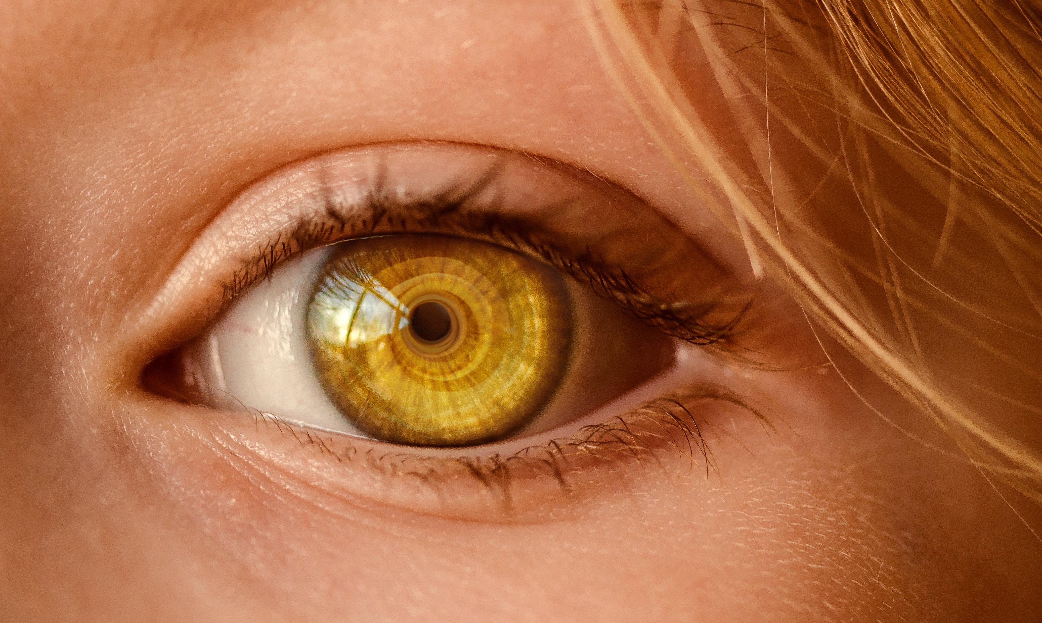 Image result for yellow eyes close up
